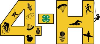 4-H Projects graphic
