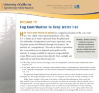 Fog Contribution to Crop Water Use