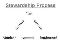Stewardship Process