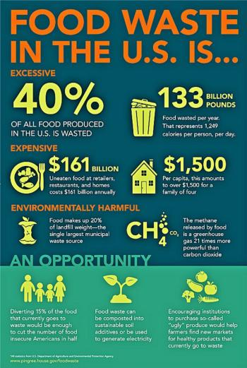 Food Waste in the US