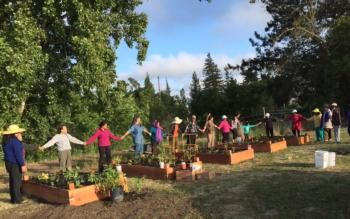 Community with new raised beds at Cambodian Temple