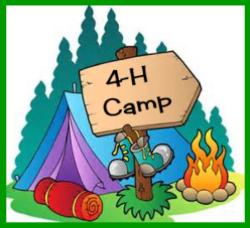 4h camp