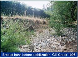 Gill bank pre