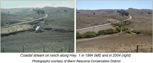 Poncia ranch